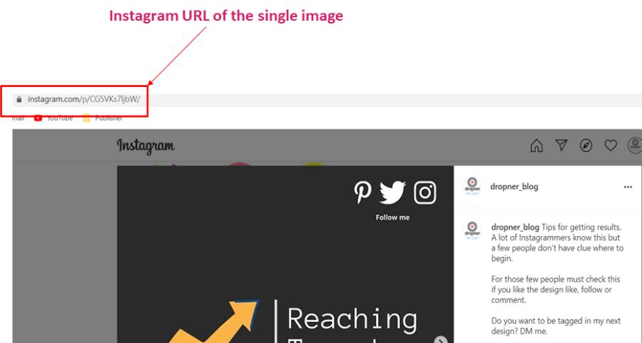 IG Single URL